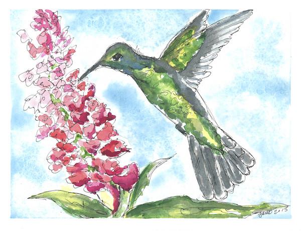 Hummingbird | By Jane Martin