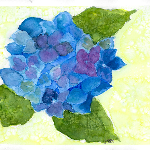 Hydrangea in Blue by Jane Martin | Watercolor Original Painting