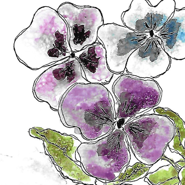 Purple Pansies by Jane Martin | Card from Original Watercolor