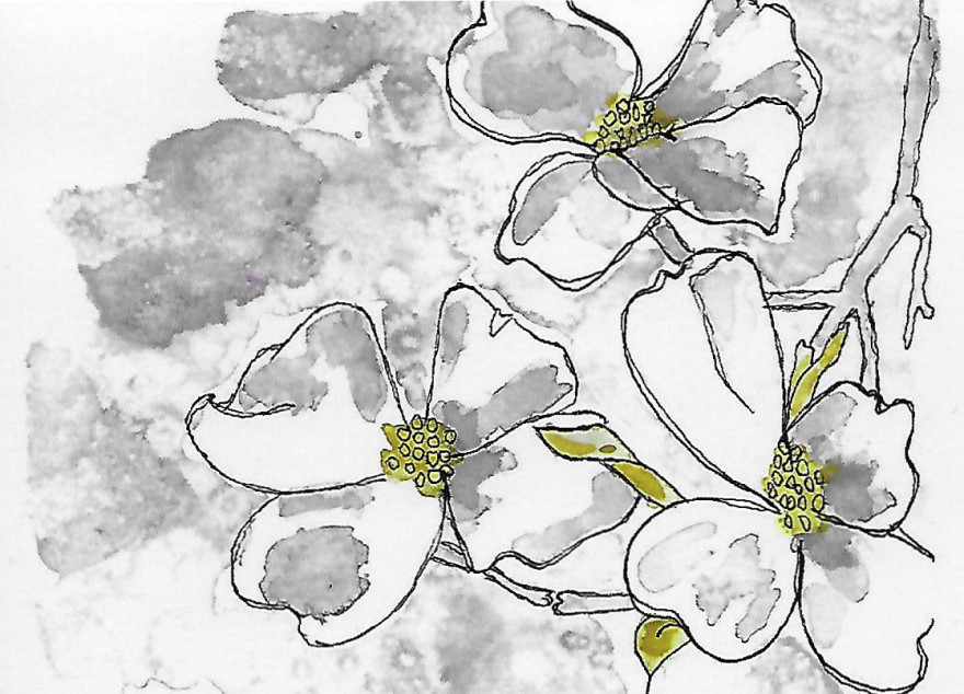 White Dogwood by Jane Martin Card from an Original Watercolor