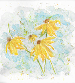 Coneflowers by Jane Martin | Original Watercolor Painting