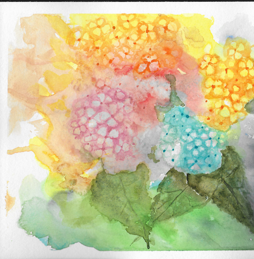 Loose Hydrangias by Jane Martin | Original Watercolor Paintin