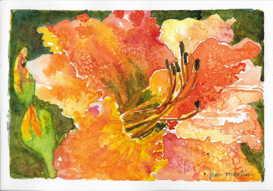 Daylilies by Jane Martin | Original Watercolor Painting