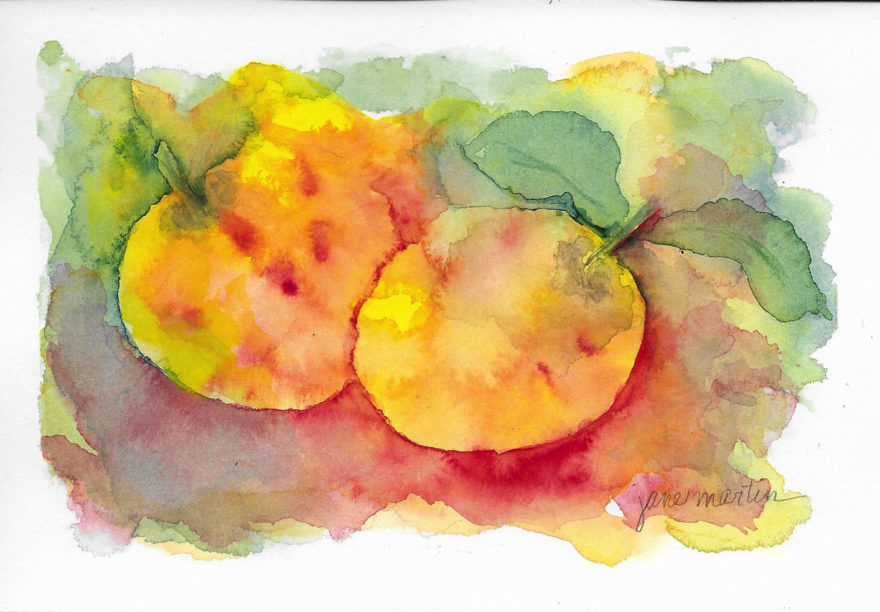 autumn-apples-by-jane-martin-original-watercolor-painting
