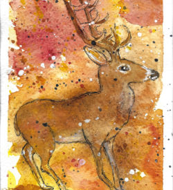 a-buck-in-autumn-by-jane-martin-original-watercolor-painting
