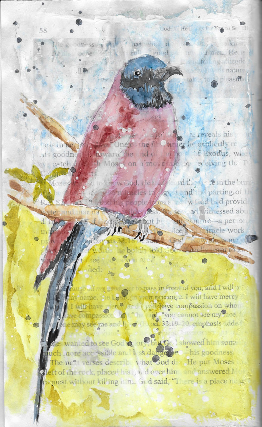 Robin Print by Jane Martin | Print of Original Art Journal Page in an Altered Book
