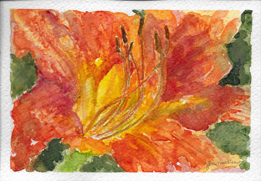 Friendship Lily by Jane Martin | Print of Original Watercolor