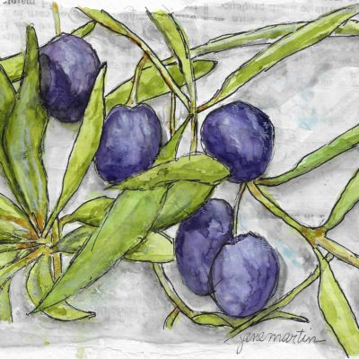 The Offering of an Olive Branch by Jane Martin | Original Watercolor Painting