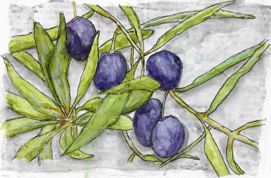 The Offering of an Olive Branch by Jane Martin   Original Watercolor Painting
